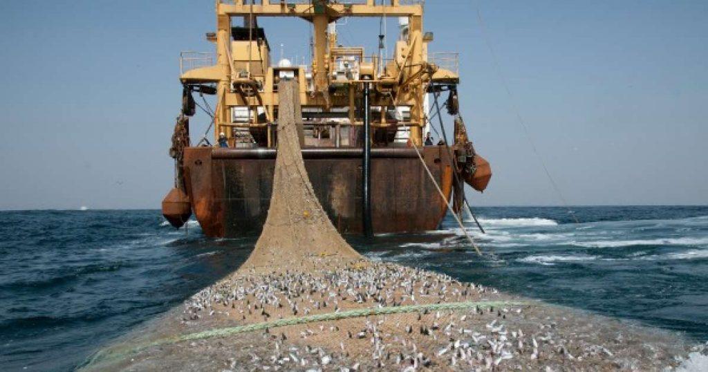 60M x 1M 3 Layers Wooden Floats Trawl Fishing Net Dragnet Drag Net